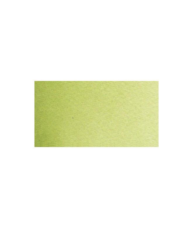 Isaro green light